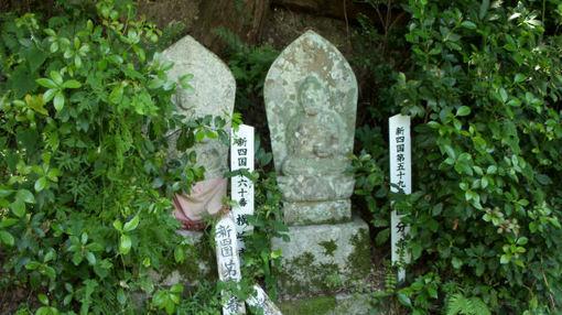 Shikoku602