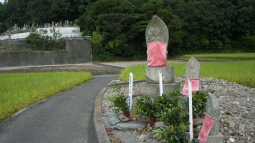 Shikoku262