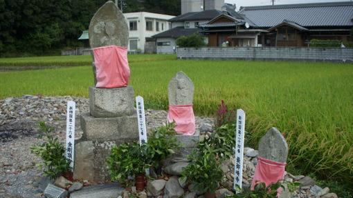 Shikoku272