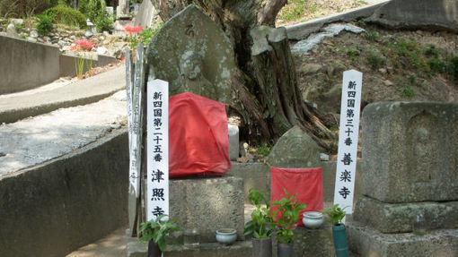 Shikoku302