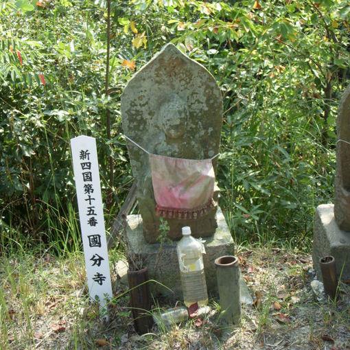 Shikoku15