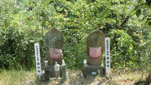 Shikoku152