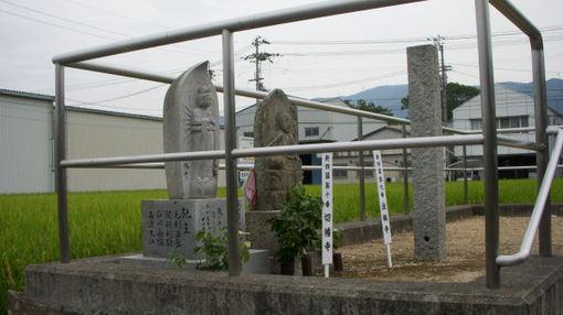 Shikoku102