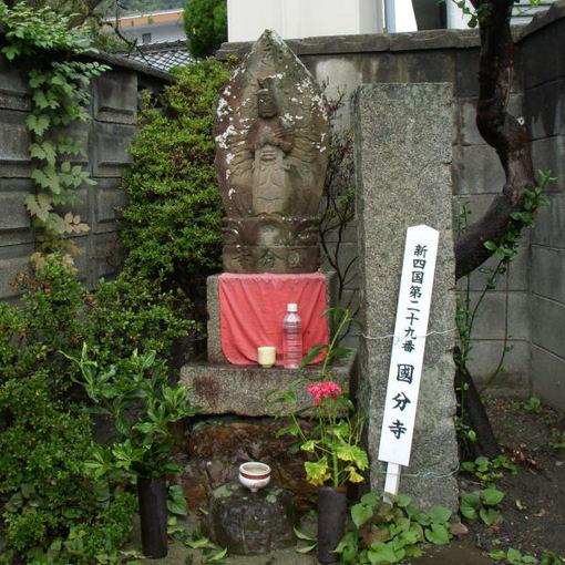 Shikoku29