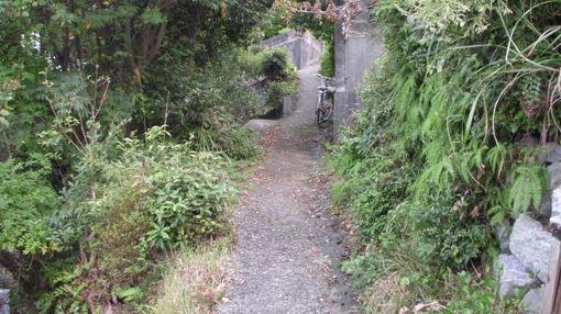 Shikoku502
