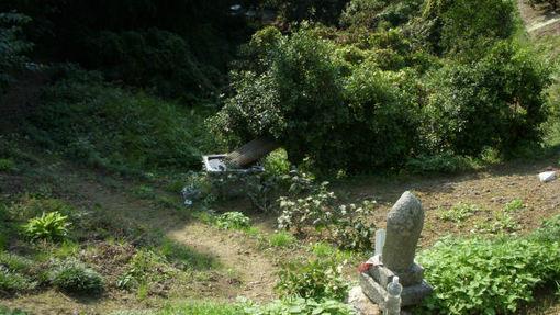 Shikoku212
