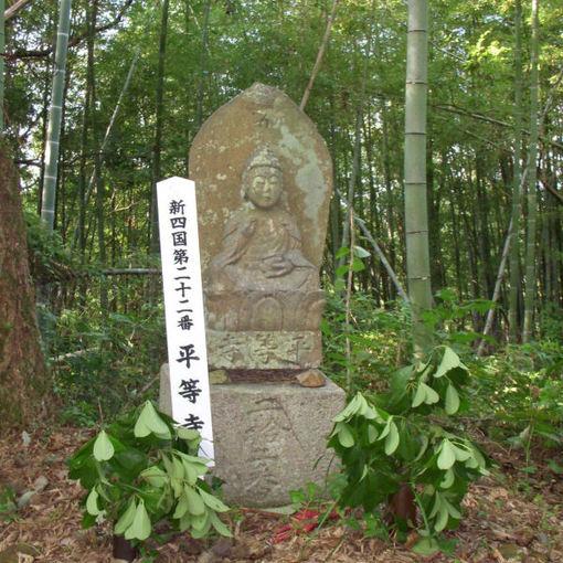 Shikoku22