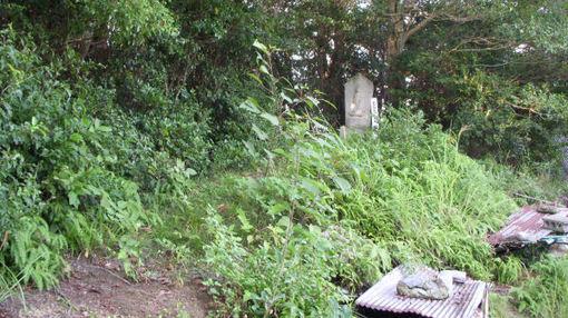 Shikoku642