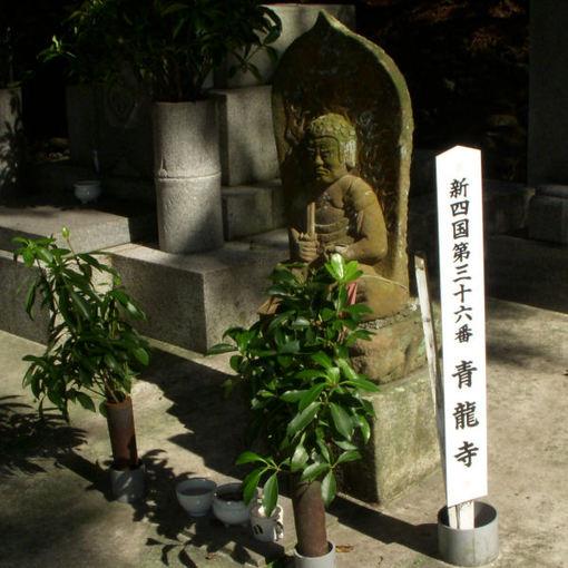 Shikoku36